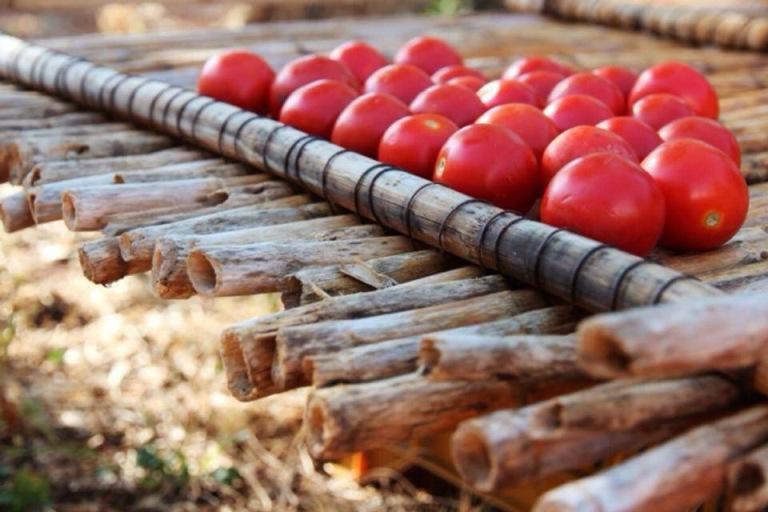 pomodorini salento