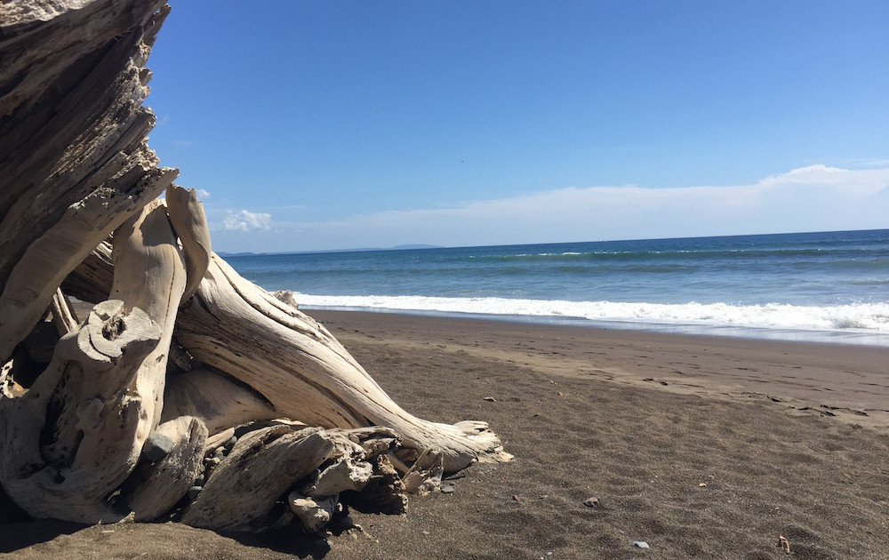 Playa Camarol