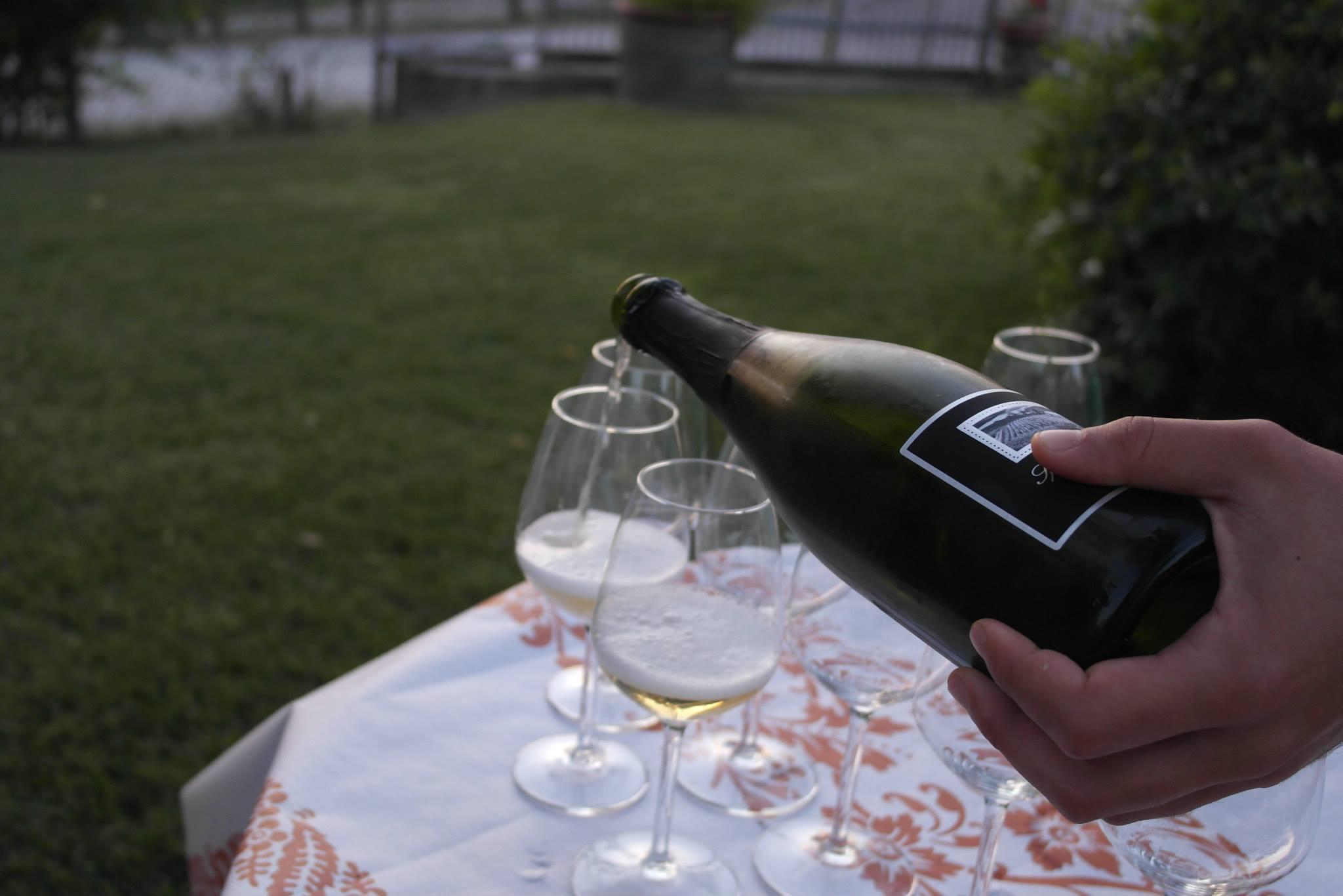 12 aziende vitivinicole a Rimini