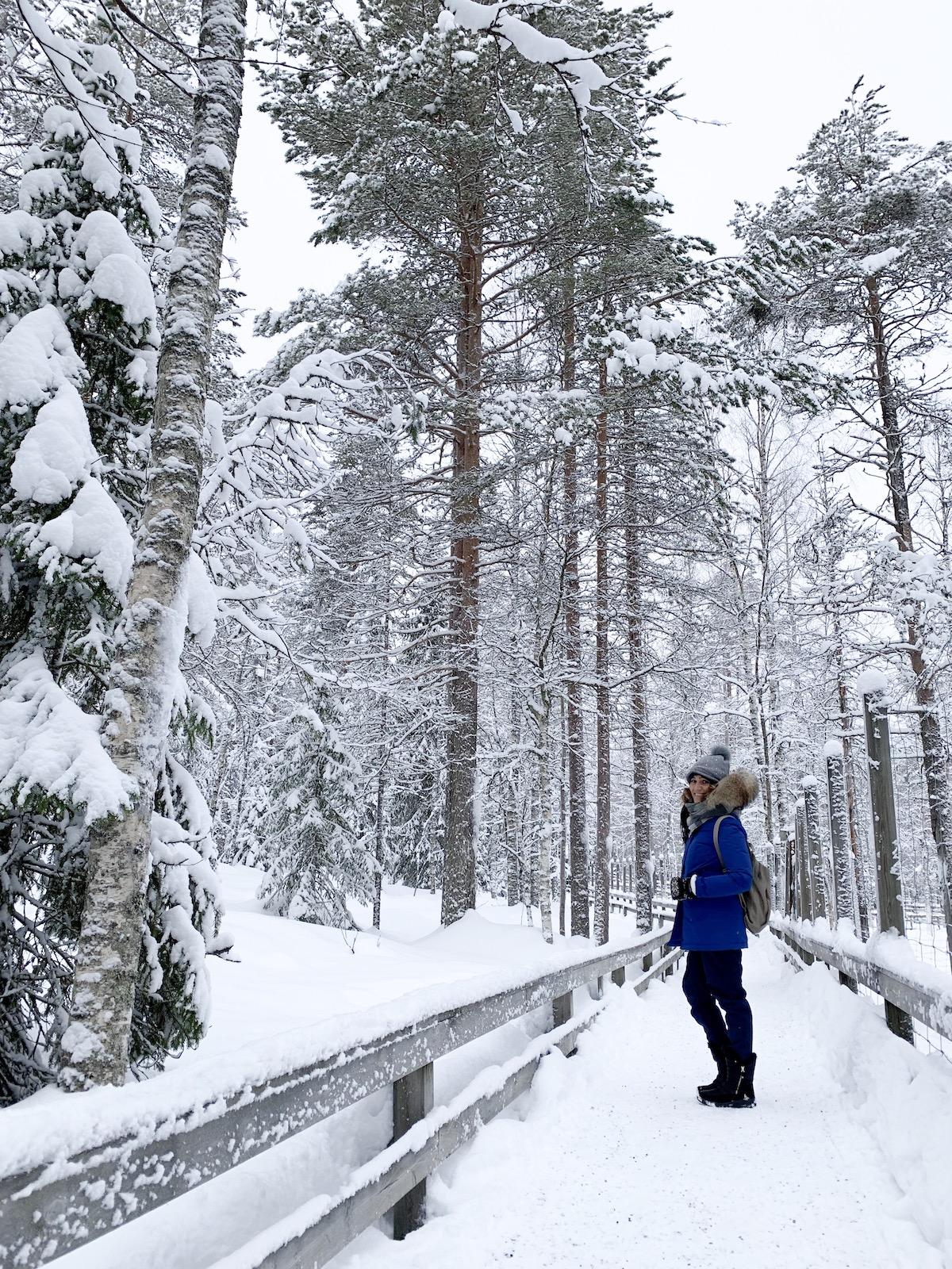 Cosa fare nella Lapponia Finlandese